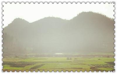 成都锦江:给土地流转上保险 建立健全风险防范新机制