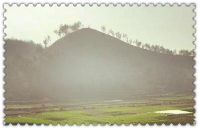 安徽省庐江县:土地托管怎么服务?为何受欢迎?