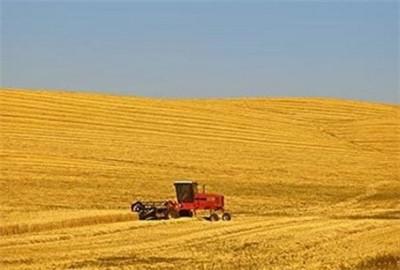 """""""十三五""""规划让国家粮食安全得到保障"""