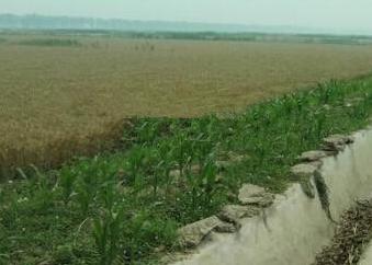 """吉林延边州农村改革的""""水口模式""""(经验、成效、启示)"""