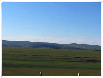 内蒙古赤峰万合永镇:土地流转实现农商双赢