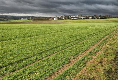 福建省农业厅关于加快推进富硒农业产业发展的意见