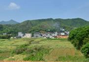 """益阳市""""十三五""""农业现代化发展规划 下"""