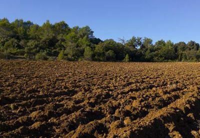 海南清理农垦农业用地 将规范20个农场土地租赁价格