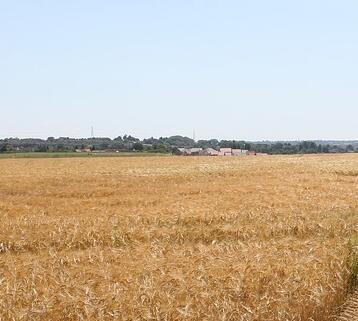 普洱:三大创新推进农村土地经营权抵押贷款试点工作