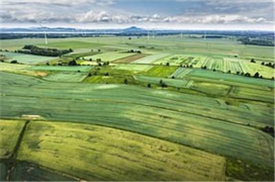 浙江龙泉市:土地流转 促进农业发展农民增收