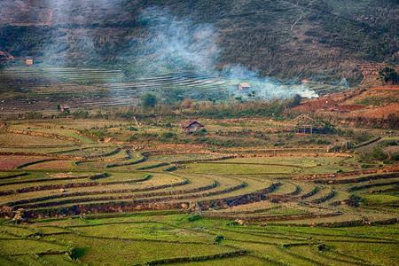 桂林公平乡土地流转是怎么让农户收益的?
