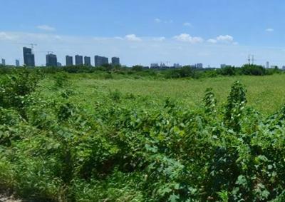 2016年嘉峪关市农业支持保护补贴改革实施方案(试行)