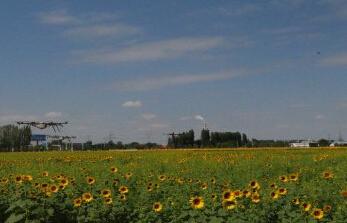 新疆全国休闲农业和乡村旅游示范县名单
