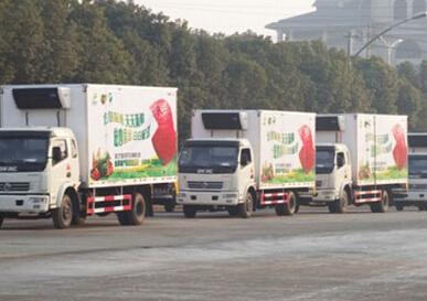 """安徽怀远县落实鲜活农产品运输""""绿色通道""""政策"""
