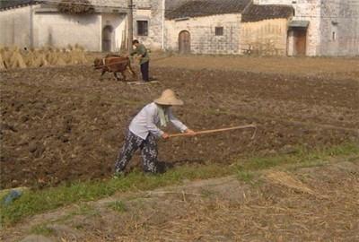 河南省带动全程托管促进合作双赢