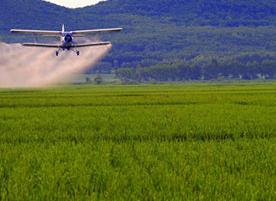 厦门约12万亩耕地 流转到农业经营主体