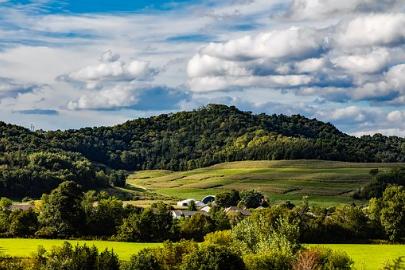 福建鲇坑村土地流转:从抛荒到抢种 耕地为何值钱了?