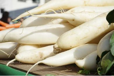 2016年萝卜市场如何?未来价格预测会有什么样的走势?