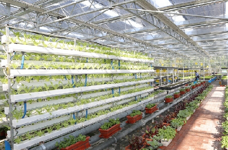 成都市2017年至少打造8个智慧农业示范区