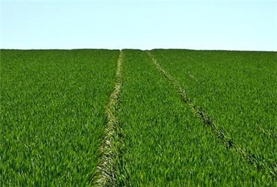 河南省即将启动第三次全国农业普查