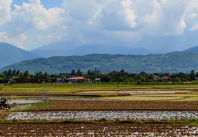 云南大理州土地流转:2016年底总面积将超40万亩