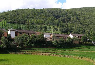 重庆土壤污染防治:90%受污染耕地将被安全利用