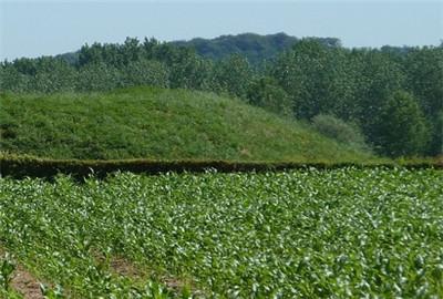 云南玉溪市农业农村经济呈六个稳增长