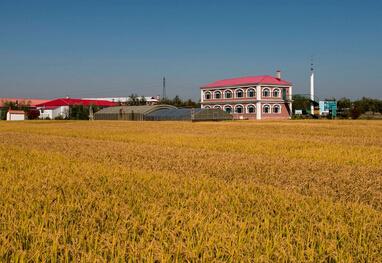 庆安县家庭农场扶持政策及发展规模
