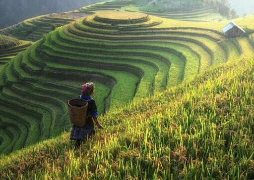 土地流转增收致富的几种主要类型(奈曼旗)