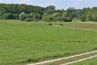 大理市着力打造特色生态休闲农业