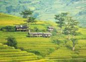 农村宅基地、承包地抵押贷款进展如何?这些农民已经贷出几十万