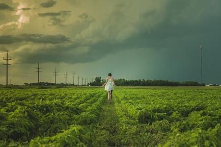 2016《北票市加快建设农村产权流转交易市场实施意见(试行)》