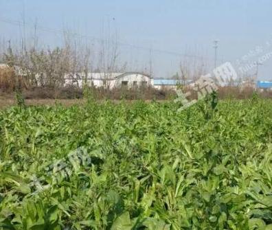 陕西省统计局发布:2016年陕西农村土地确权登记情况最新消息