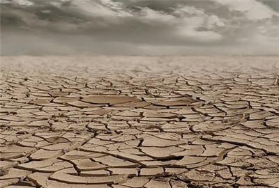 双辽市:测土配方施肥节本增效显著