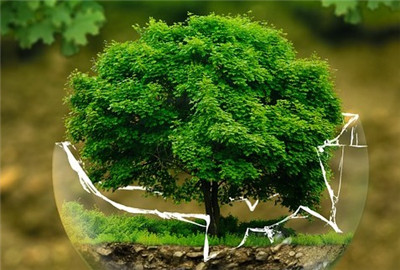 洛阳市生态环境建设体系生态修复行动计划