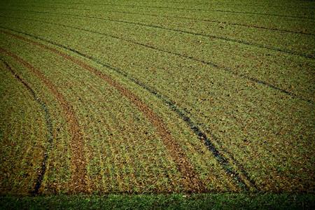 2016年安徽耕地流转率近50% 附2017土地流转新政策