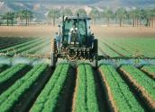 2017年我国农药市场需求趋势分析