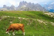 农业部印发农垦经济和社会发展十三五规划