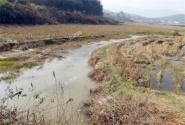 衡水市土地流转最新消息:流转面积居河北首位