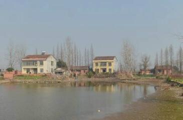 宁夏红寺堡土地流转开启移民新生活