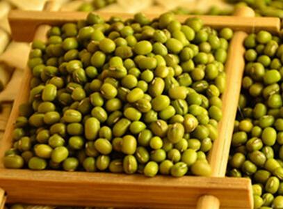 2017年绿豆市场怎么样?白城绿豆产业的发展前景分析
