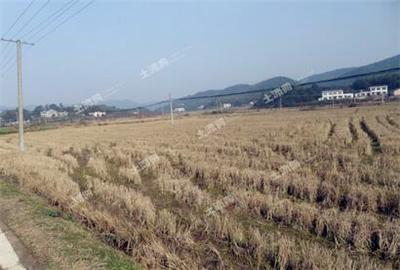 2017年河北省基本完成农民承包地确权登记颁证