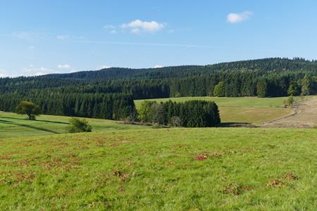 农村土地流转给农民和乡村工作带来的好处有哪些?