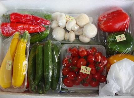 把蔬菜装进礼盒 无公害蔬菜礼盒走俏爆红