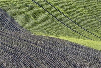 春管春播由南向北陆续开始扩撒性展开