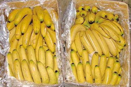 香蕉多少钱一斤?2017年香蕉价格预测分析