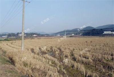 广西壮族自治区土地整治办法实施:严守耕地红线
