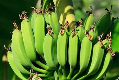 白银市2017年农产品质量安全宣传培训工作方案