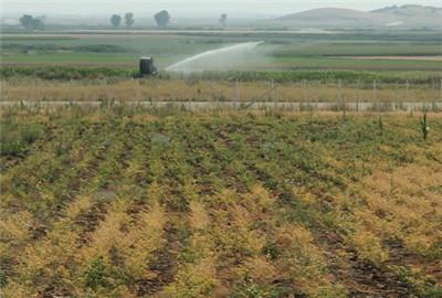 莆田市土壤污染防治行动计划实施方案