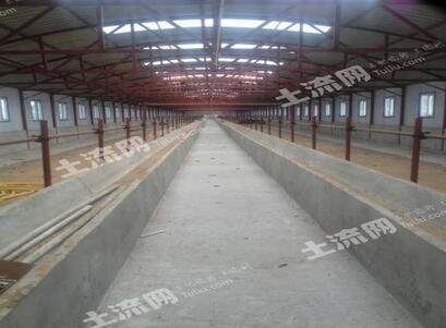 吉林松原市长岭农机专业合作社到2016年底已发展到230家