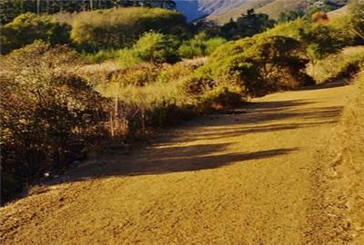 梧州市土壤污染防治工作方案