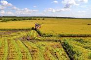 如何保护土地流转下农村剩余人口的生计?