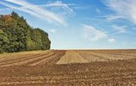 """土地流转农民如何拿""""双薪"""" ?"""