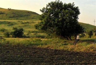 龙州县土壤污染防治行动计划工作方案
